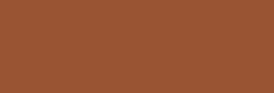 Pintura Pizarra Negra Pébéo 250 ml - Spiced Amber