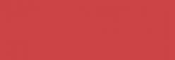 Pintura Pizarra Negra Pébéo 250 ml - Holly Red
