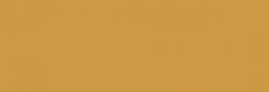 Pintura Pizarra Negra Pébéo 250 ml - Light Brown
