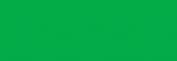 Pasteles Rembrandt - Verde Perm. Osc. 2