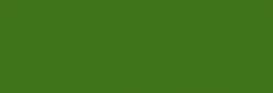 Pasteles Rembrandt - Verde Perm. Claro 4