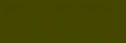 Pasteles Rembrandt - Verde Oliva 5