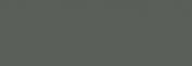 Pasteles Rembrandt - Gris Verdoso 2