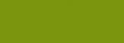 Pasteles Rembrandt - Verde CinabrioClaro2