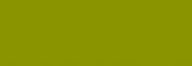 Pasteles Rembrandt - Verde Oliva 2