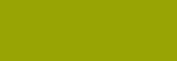 Pasteles Rembrandt - Verde Oliva 3