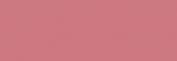 Pasteles Rembrandt - Caput MortuumRojo3