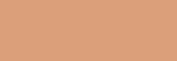 Pasteles Rembrandt - Tierra Siena Tost. 4
