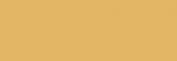 Pasteles Rembrandt - Tierra SienaNatural4