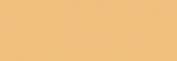 Pasteles Rembrandt - Tierra SienaNatural5