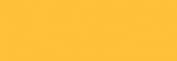 Pasteles Rembrandt - Amarillo Oscuro 1