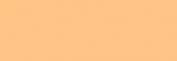 Pasteles Rembrandt - Ocre Oro 4