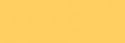 Pasteles Rembrandt - Amarillo Oscuro 2