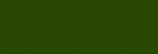 Lápices Pastel CarbOthello - Viridian Matte