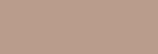 Lápices Pastel CarbOthello - Cold Gray 1