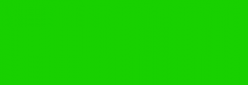 Pintura para Tela Setacolor Pébéo Transparente 45 ml - Verde brillante