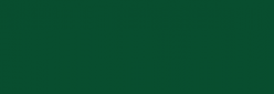 Dupont Classique Pintura para Seda y Lana 125 ml - Eucalyptus