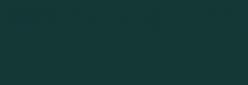 Dupont Classique Pintura para Seda y Lana 125 ml - Vert Mode