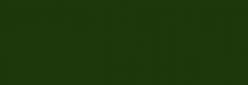 Dupont Classique Pintura para Seda y Lana 125 ml - Lierre