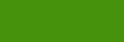 Dupont Classique Pintura para Seda y Lana 125 ml - Vert Feuillage