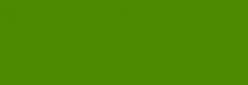 Dupont Classique Pintura para Seda y Lana 125 ml - Fougère