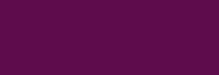 Arasilk Dupont Pintura Seda 50 ml - Malvina