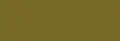 Arasilk Dupont Pintura Seda 250 ml - Army