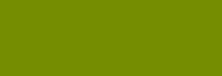 Javana Pintura sobre Seda 50 ml - Verde Oliva
