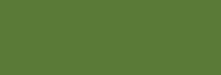 Daler Rowney Georgian Oil 75 ml - Tierra Verde