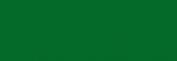 Dupont Alter Ego 250 ml - Verde Troène