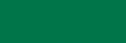 Amsterdam Spray Paint Profesional - Verde Perm. Oscuro
