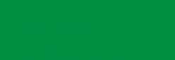 Amsterdam Spray Paint Profesional - Verde Paolo Veronés