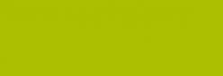 Amsterdam Spray Paint Profesional - Verde Perm. Claro