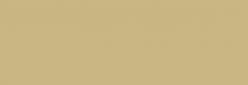 Pigmentos Pearl Ex Jacquard - Dorado Interferencia