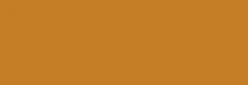 Pigmentos Dalbe serie 1 - Tierra Sombra Natura