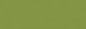 Pigmentos Dalbe serie 2 - Tierra Verde Claro