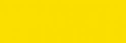 Pigmentos - Dalbe serie 5 - Amarillo Cadmio Medi