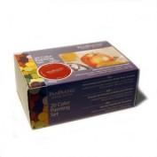 Panpastel Set 20 colores Pintura CF30201