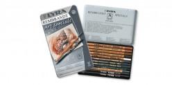 Caja Lápices Especiales para Artistas Lyra Rembrandt Art Specials 2001123