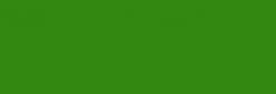 Cartón Ondulado - Verde Botella