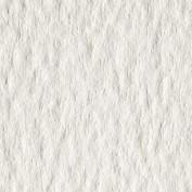 Papel Acuarela Guarro 50 x 70 240 gr. IP Grano grueso 0408034