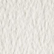 Papel Acuarela Guarro 50 x 70 350 gr. IP Grano fino 0408044