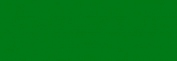 Papel Canson Mi-Teintes para pastel 50x65 10 h - Vert Billard