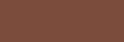 Papel Canson Mi-Teintes para pastel 50x65 10 h - Sépia