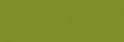 Papel Canson Mi-Teintes para pastel 50x65 10 h - Vert Pomme