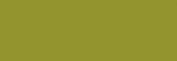 Papel Canson Mi-Teintes para pastel 50x65 10 h - Vert Amande