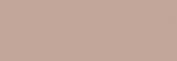 Papel Canson Mi-Teintes para pastel 50x65 10 h - Gris Chiné