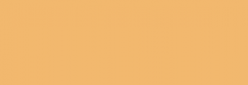 Papel Canson Mi-Teintes para pastel 50x65 10 h - Maïs