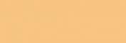 Papel Canson Mi-Teintes para pastel 50x65 10 h - Chanvre Clair