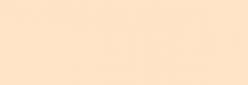 Papel Canson Mi-Teintes para pastel 50x65 10 h - Lys